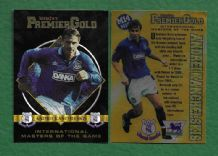 Everton Andrei Kanchelskis IM14 International Master